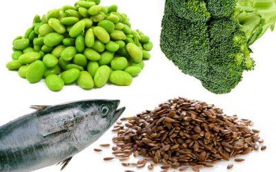 Top 10 indenfor fødevarer med protein